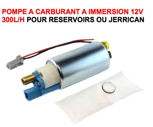 Pompe à Carburant à Immersion 300L/H 12V